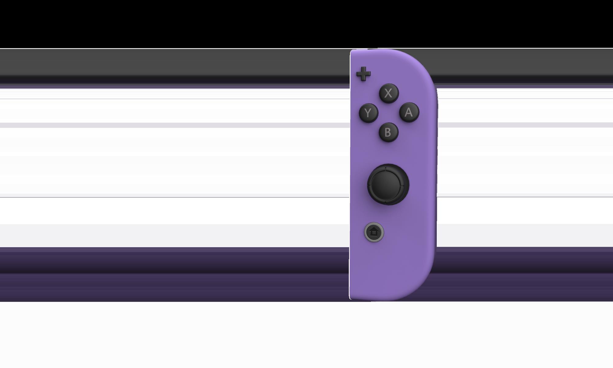 Nintendo Joy Cons | Custom Joy Con Controllers | Colorware